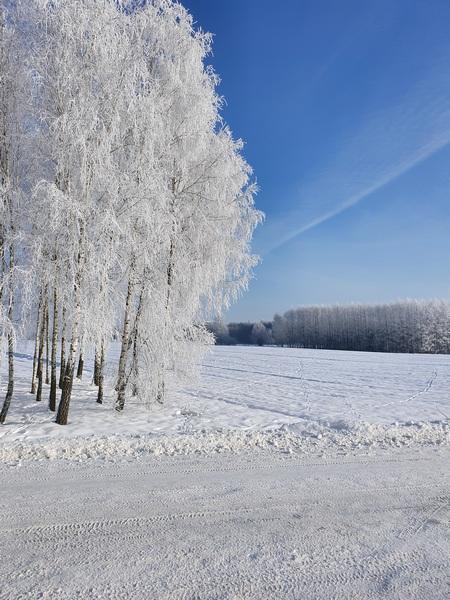 """Konkurs """"Zima w obiektywie"""" rozstrzygnięty"""